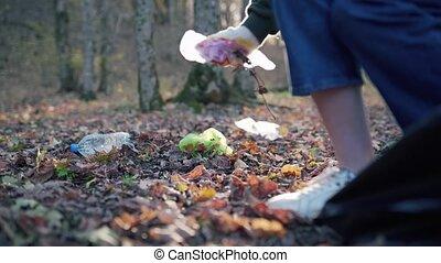 close-up., gaspillage, déchets, forêt, pollution, collects, baissé, femme, feuilles, plastique, sale, écosystème