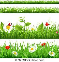 coccinelle, fleurs, ensemble, arrière-plans, herbe