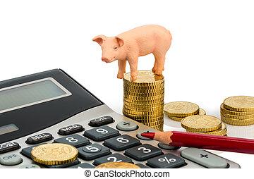 cochon, calculatrices
