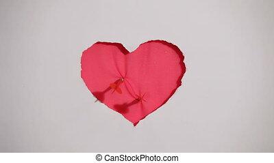 coeur, blanc rouge, fond