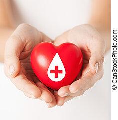 coeur, femme, signe, tenant mains, donateur, rouges