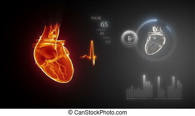 coeur humain, trace pouls