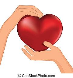 coeur, main, personne, vecteur, prise, rouges