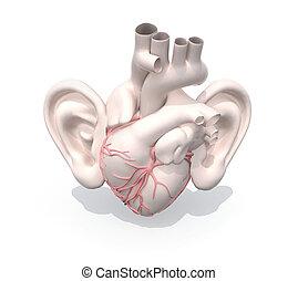 coeur, oreilles, humain, orgue, grand