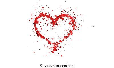 coeur, roses, pétales