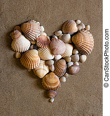 coeur, sable, coquille