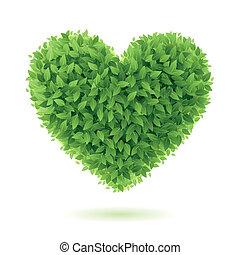 coeur, symbole, feuilles vertes
