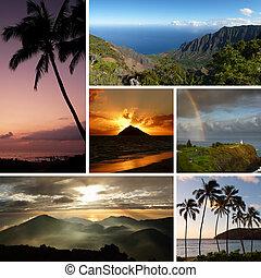 collage, photos, multiple, hawaï, typique