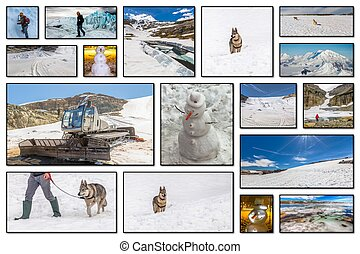 collage, sports hiver