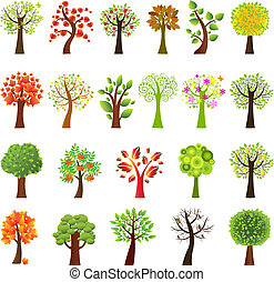 collection, arbres