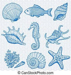 collection., illustration, main, mer, dessiné, original
