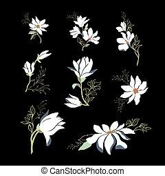 collection, magnolia, conception, ton, fleurir, printemps, illustration., vecteur, branches
