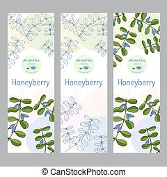 collection., set., thé, honeyberry, herbier, bannière