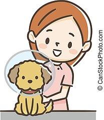 collier, élisabéthain, chien, infirmière