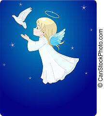 colombe, ange
