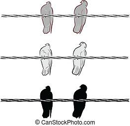 colombes, fil, deux