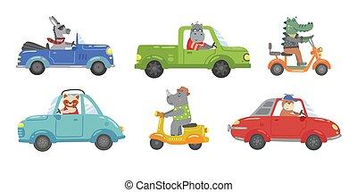 coloré, cérémonie, clair, mignon, animaux, voitures