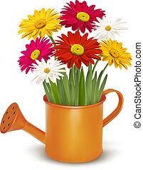coloré, can., printemps, arrosage, illustration, vecteur, orange, fleurs fraîches