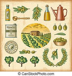 coloré, ensemble, récolte, vendange, olive