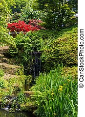 coloré, printemps, britannique, angleterre, jardin, pendant, sussex, château