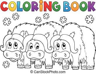coloration, muskoxen, livre, trois