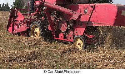 combiner, récolte, blé