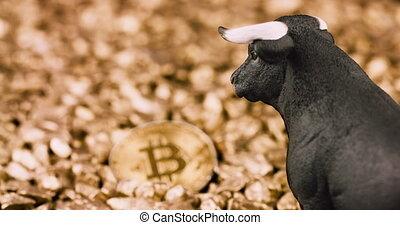 concept, bitcoin, crypto, marché, taureau