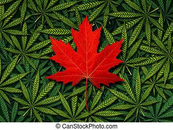concept, canadien, marijuana