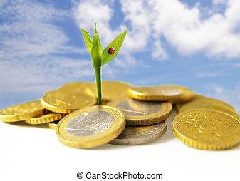 concept, financier, pièces, -, croissance, nouveau, euro