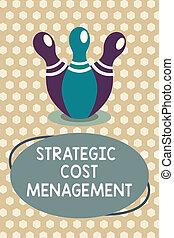 concept, mot, business, texte, décision, budgétiser, stratégique, cout, écriture, combiner, confection, dépenses, management.
