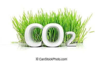 concept, texte, isolé, écologique, co2, herbe verte, 3d