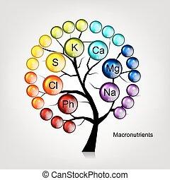 conception, concept, arbre, vitamines, ton