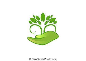 conceptions, feuille, arbre, isolé, fond, logo, blanc, inspiration, soin