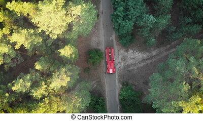 conduite, brûler, sommet, pin, bourdon, camion, forêt, long, vue, route, rouges