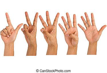 confection, signe, homme, main