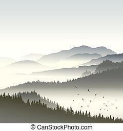 conifère, fog., collines, forêt