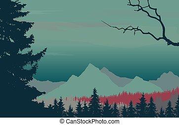conifère, montagne, ciel nuit, forêt, sous, paysage