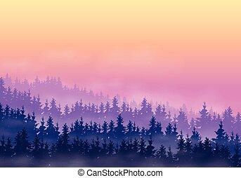 conifère, nuages, montagne, pourpre, collines, ciel, jaune, brouillard, forêt, aube, paysage