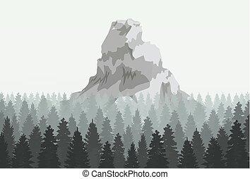 conifère, silhouette, illustration., montagne, musterious, vecteur, forêt, template.