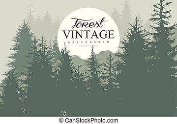 conifère, vecteur, endroit, plat, vendange, résumé, nature, text., pin, color., arrière-plan., silhouettes, cercle, conception, forêt, sauvage, blanc vert, arbres, ton, paysage