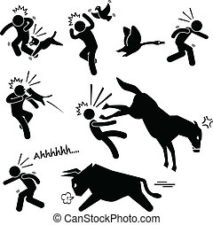 conjugal, attaquer, humain, animal