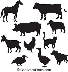 conjugal, silhouettes, animaux