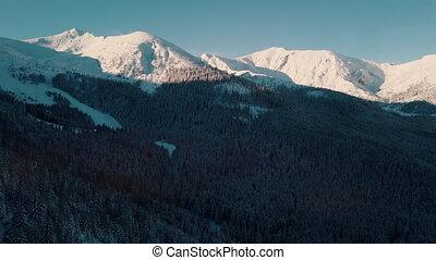 contre, hiver, neige-couvert, ciel bleu, fond, clair, montagnes, forêt