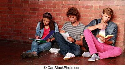 contre, readi, mur, séance, étudiants