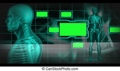 copie, squelette humain, tournant