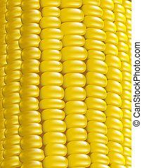 corn., mûre, fragment., macro., illustration, vecteur