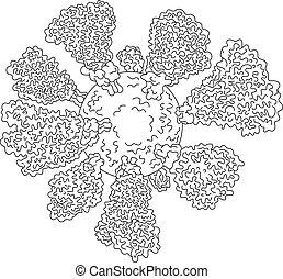 coronavirus, cellule, ligne, miscroscopic, dessin