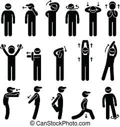 corps, étirage exercice, icône