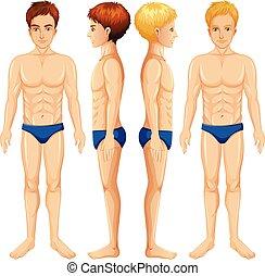 corps, ensemble, mâle