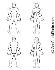 corps, femme, contour, illustration, vide, homme